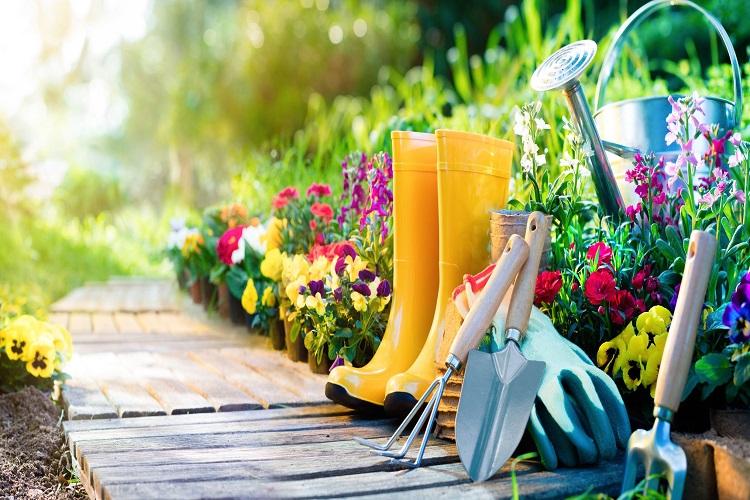 garden for handyman